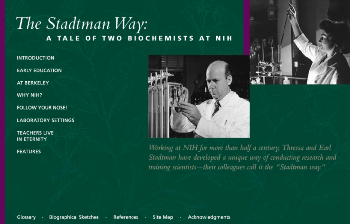 The Stadtman Way Home page graphic used on earlier site.